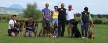 Pitesti - Smart Dogs Club Pitesti